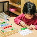 Montessori principles sensitive periods